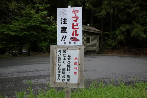 Ayamabiru002