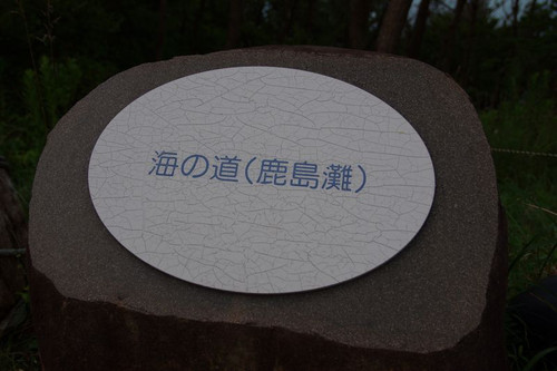 Ayamayuri03