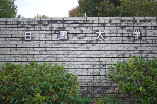 Ahakuou03