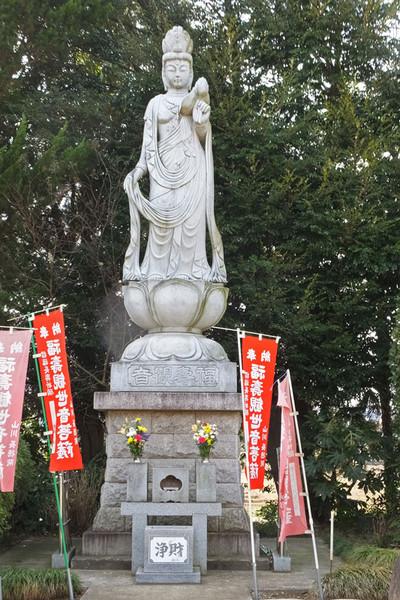 Aohakamairi03