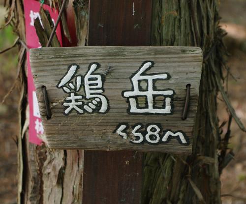 Asantyouheniwatori05