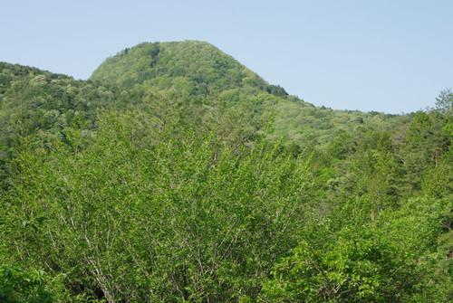 Aniwatoridake05
