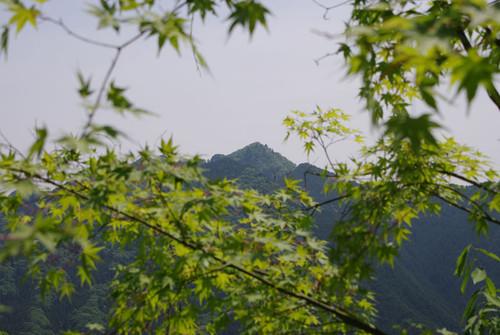 Akinkouato04