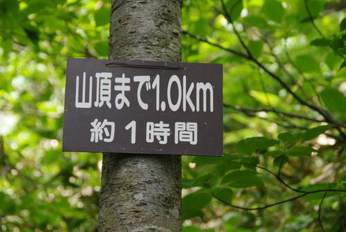 Agyorinsou04