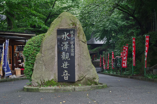 Amizusawakannon04