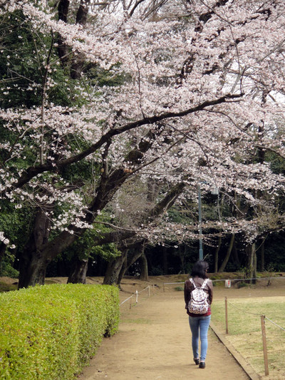 Asiroyama03