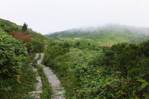 Asaigo02