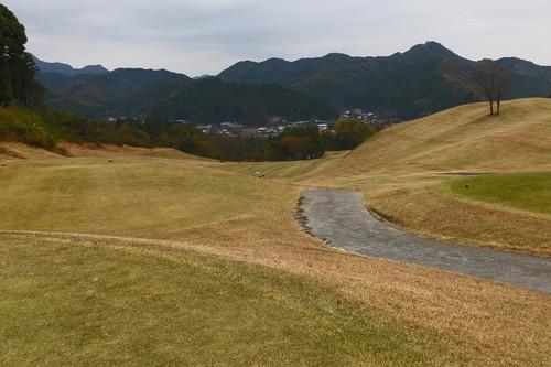 Aomoigawa03