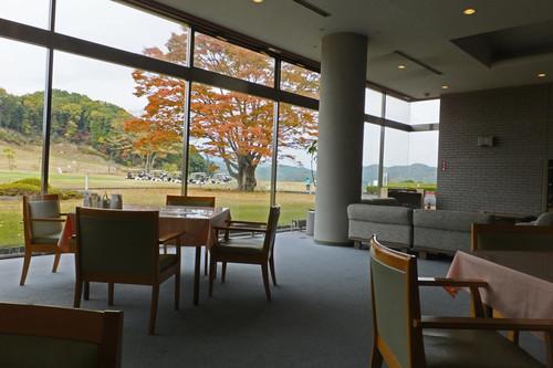 Aomoigawa07