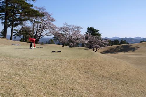 Akarasuyama11