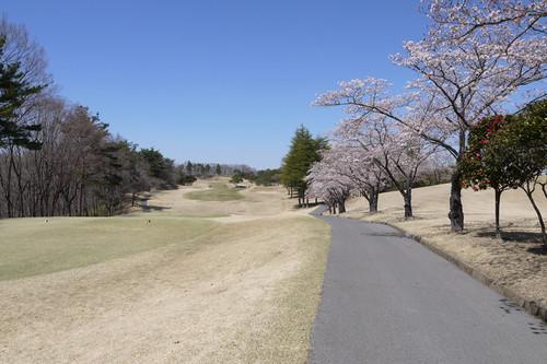 Akarasuyama14